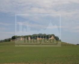 clav0009 chateau ruine vigne 2