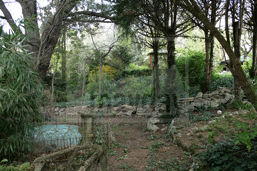 jean0007 jardin 1
