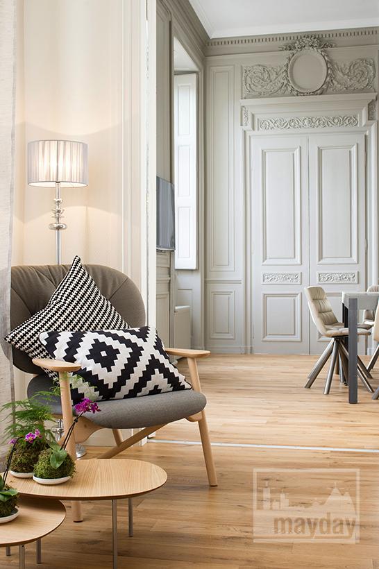 clav0012-appartement-classieux-coeur-de-Lyon-salon-2