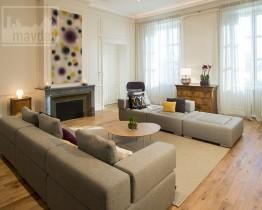 clav0012-appartement-classieux-coeur-de-Lyon-salon