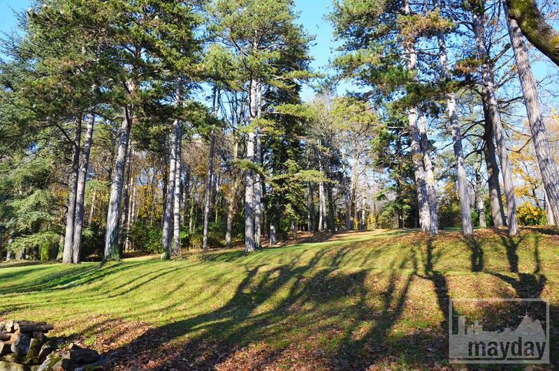 Parc chateau RAV0501