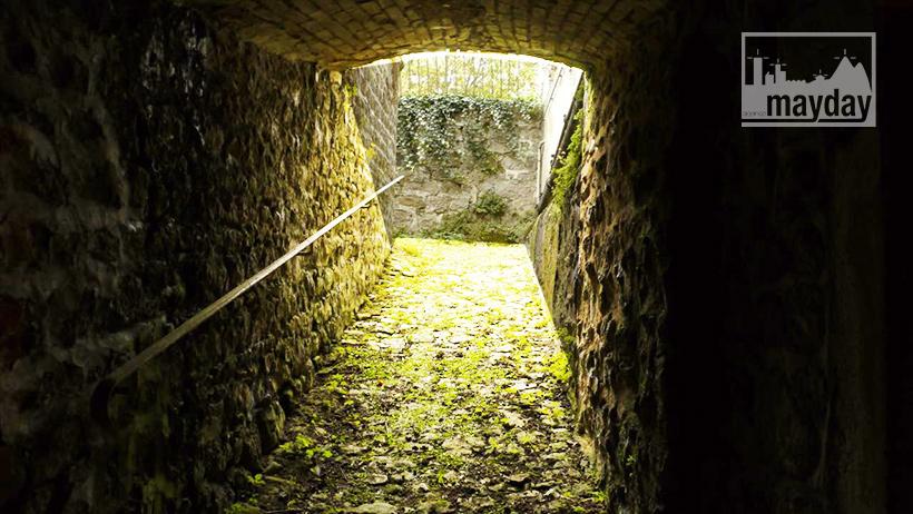 clav0121-caves-du-beaujolais-2