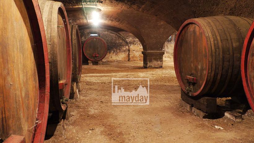clav0121-caves-du-beaujolais-7