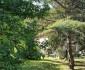 2. Jean0062-maison-marennes-Vue de l'arrière de la maison depuis le parc